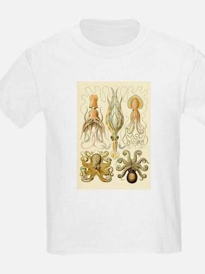 Vintage Octopus, Octopi T-Shirt