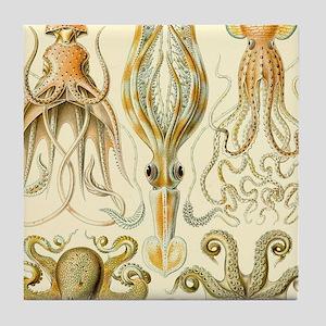 Vintage Octopus, Octopi Tile Coaster