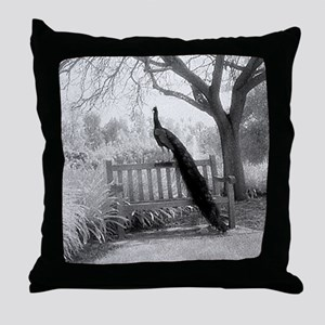 Bench Peacock Throw Pillow