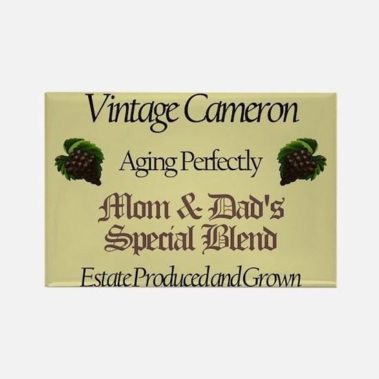 Vintage Cameron Rectangle Magnet (10 pack)
