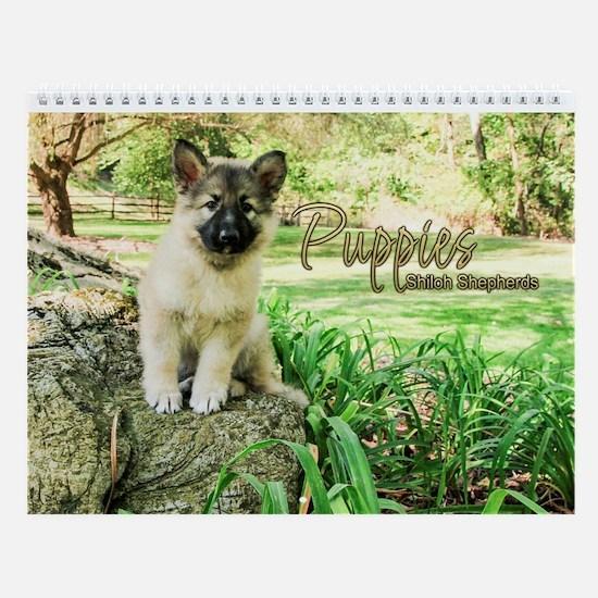 2018 Shiloh Puppy Wall Calendar