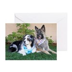 2018 Dogdayz Greeting Cards (pk Of 10)