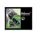 2018 Ridgewood Throw Blanket