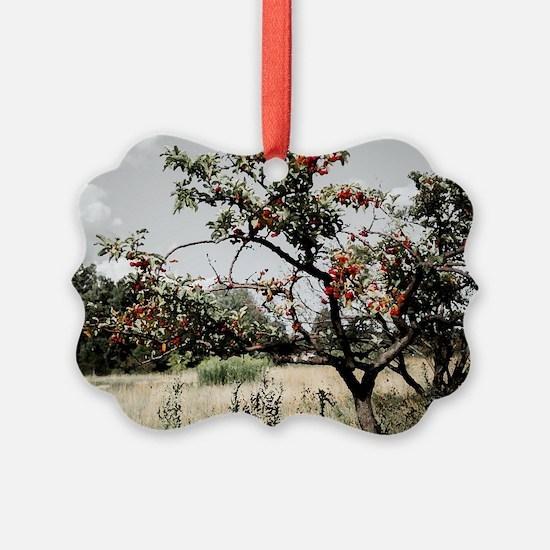Ohio Crabapple Tree Ornament