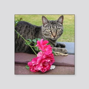 """Grey Tiger Cat with Rose Square Sticker 3"""" x 3"""""""