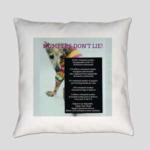 Numbers Dont Lie Everyday Pillow