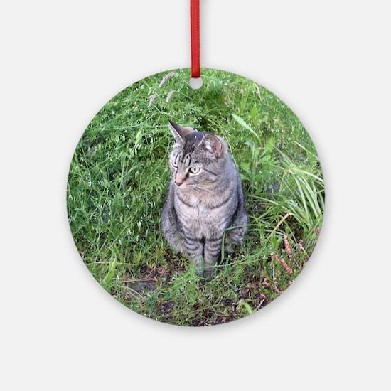 Unique Tiger cat Round Ornament