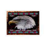 Brave Eagle Indian Motif 5'x7'area Rug