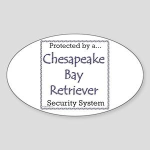 Chessie Security Oval Sticker