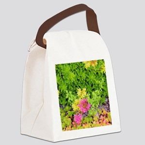 Alpine Plants with Bee Canvas Lunch Bag