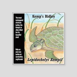 "Sea Turtle Kemp's Ridley Square Sticker 3"" x 3"""