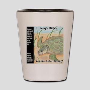 Sea Turtle Kemp's Ridley Shot Glass