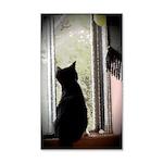 Curious black kitten 20x12 Wall Decal