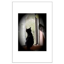 Curious black kitten Large Poster