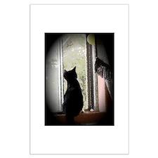 Curious black kitten Large Poster