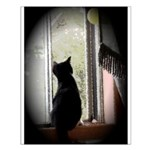 Curious black kitten Small Poster