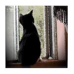 Curious black kitten Tile Coaster