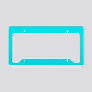 JUST COLORS: TURQ License Plate Holder