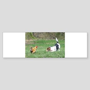 Best Friends Rooster and Beagle Bumper Sticker