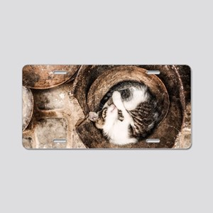 Cat Napping Aluminum License Plate