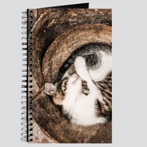 Cat Napping Journal