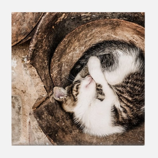 Cat Napping Tile Coaster