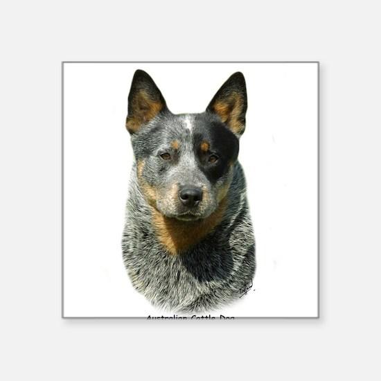 """Cute Cattle dog photo Square Sticker 3"""" x 3"""""""