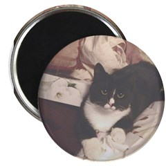 Get Well Soon Cat Magnets