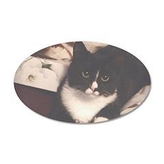 Get Well Soon Cat Decal Wall Sticker