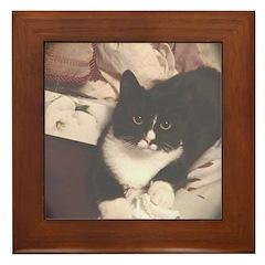 Get Well Soon Cat Framed Tile