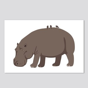 Hippopotamus Postcards (Package of 8)