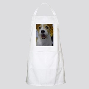 Busy Bouncing Apron