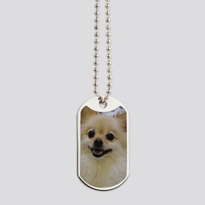 Sweet lil Lady Dog Tags