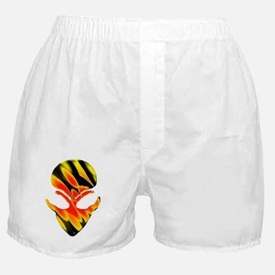 Meteor Shower 5 Boxer Shorts