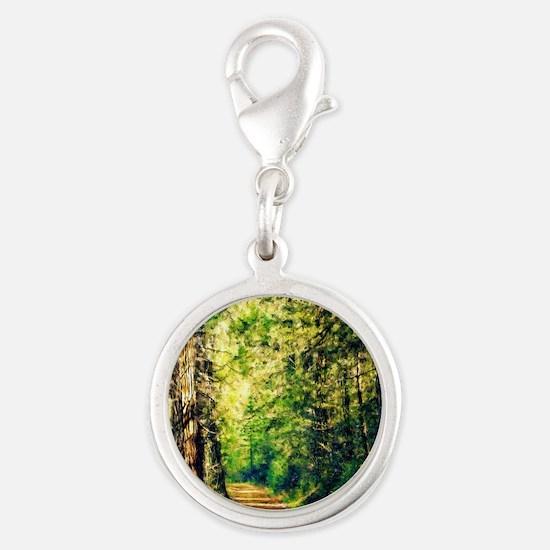 Sunlit Trail Silver Round Charm