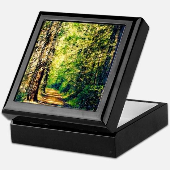 Sunlit Trail Keepsake Box