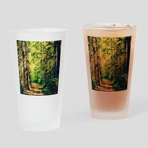 Sunlit Trail Drinking Glass