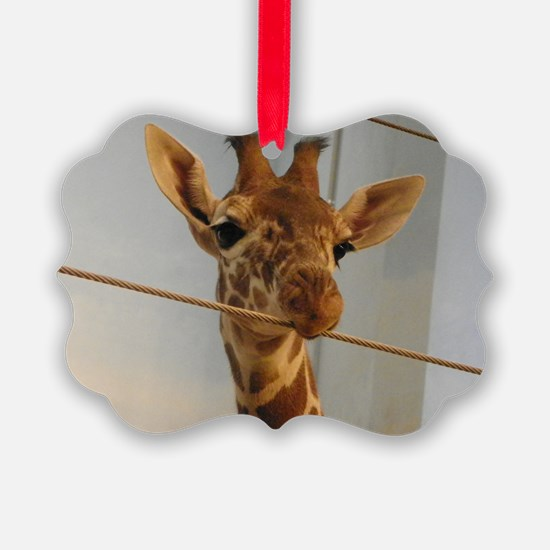 Curious Giraffe Ornament
