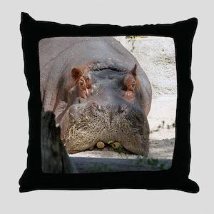 Hippo_20171101_by_JAMFoto Throw Pillow