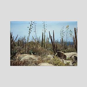 Aruba Cactus Rectangle Magnet