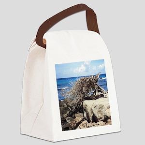 Aruba Divi Divi Tree Canvas Lunch Bag