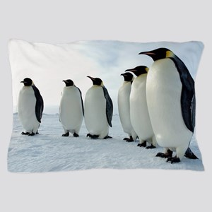 Lined up Emperor Penguins Pillow Case