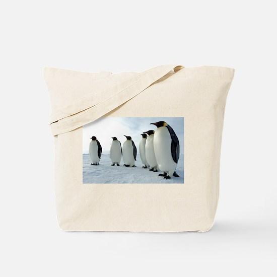 Lined up Emperor Penguins Tote Bag
