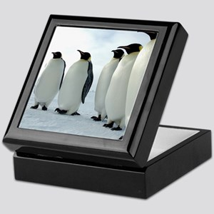 Lined up Emperor Penguins Keepsake Box