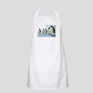 Lined up Emperor Penguins Apron