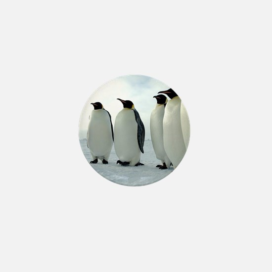 Lined up Emperor Penguins Mini Button (10 pack)