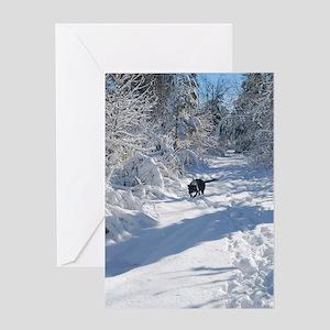 Black Lab Winter Journey Greeting Cards