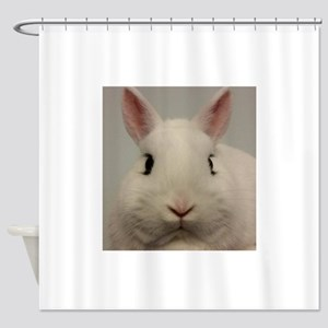 Dwarf Hotot Stare Shower Curtain