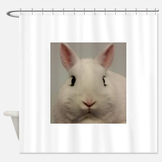 Dwarf Hotot Stare Shower Curtain