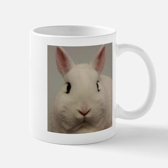 Dwarf Hotot Stare Mugs